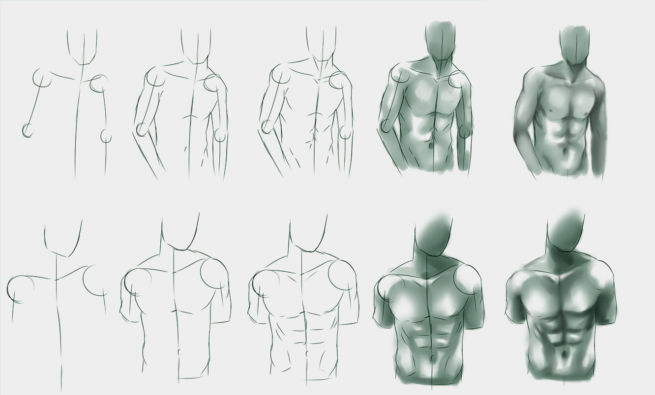 male_body_study_by_ryky-d6lwbob