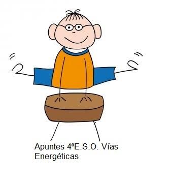 Apuntes Vías Energéticas